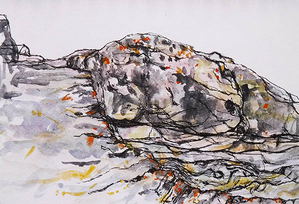 A landscape format ink and watercolour drawing of rocks at Portscatho harbour, Cornwall, by Nina Packer. The rocks are grey, with fissures and swirling shapes where the water has worn them, there are bright patches of orange and yellow lichen above the tide line.