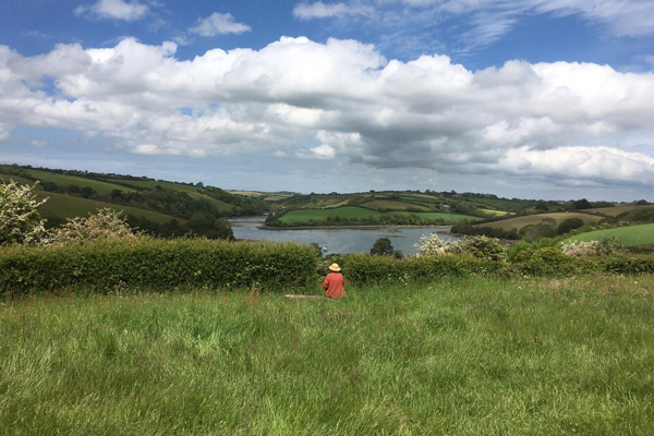 A photograph of the Percuil View with artist Nina Packer sitting at a bench looking towards the river, the sky is filled with white clouds and the landscape is lush and green, the hedges are filled with Hawthorn blossom